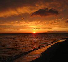 Cove Park Sunset by Daniel OBrien