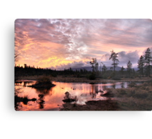 Sunset at Rough and Ready Metal Print