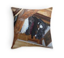 Student in Leiden Throw Pillow