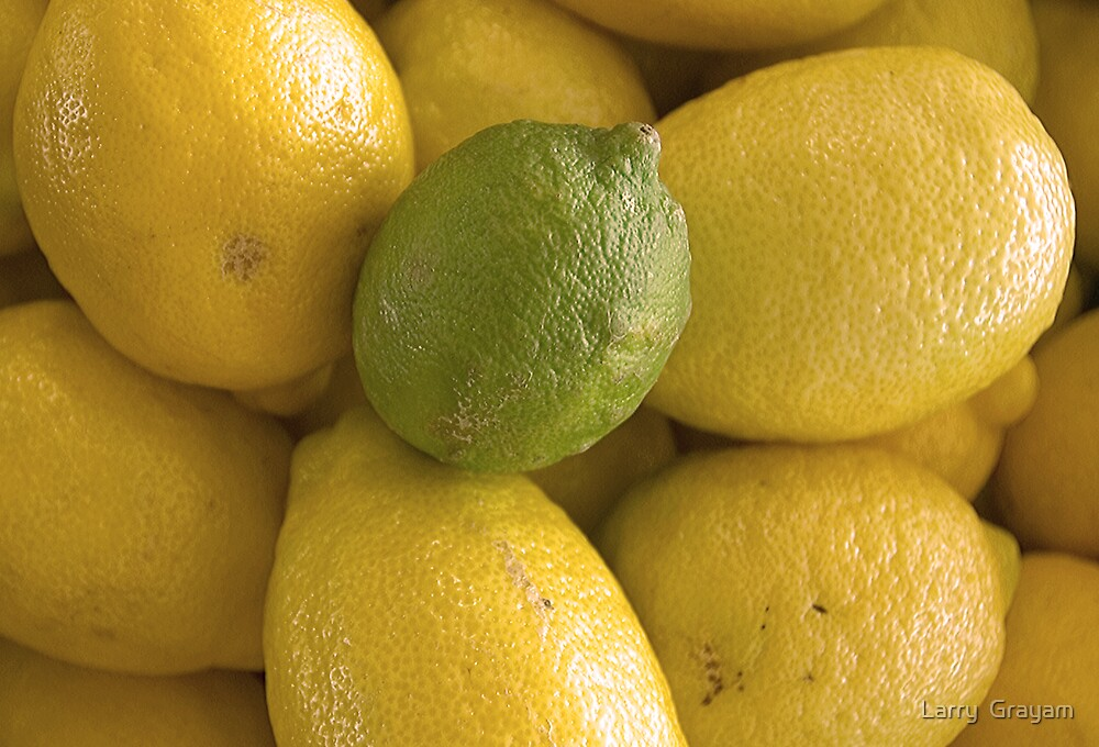 Lemons and Lime by Larry  Grayam