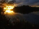 """'Sunrise at Hearne's Lake"""" by debsphotos"""