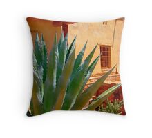 Lost City Museum Throw Pillow