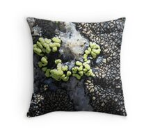 What is This? Quickly solved by Bezay. It is quartz and lichen shot way above timberline in Colorado. Throw Pillow