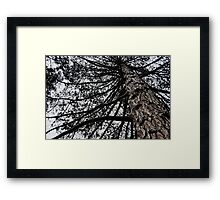 The Cold Part Of Town Framed Print