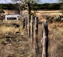 Down The Fence Line     ( BoneYard Series ) by Carla Jensen