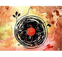 Enchanting Vinyl Records Grunge Art Print Photographic Print
