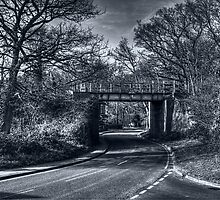 Railway Bridge by Nigel Bangert