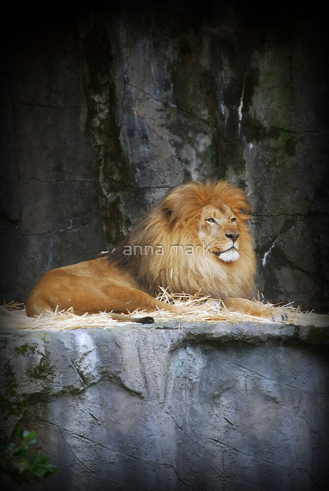 On His Throne by anna mark