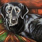 Buddy Alpha Dog by Susan Bergstrom