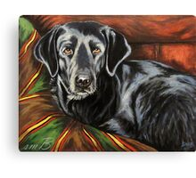 Buddy Alpha Dog Canvas Print