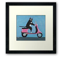 Cat on a Vespa Framed Print