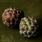 CUSTARD APPLE by RakeshSyal