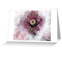 Having A Good Time.............. Greeting Card