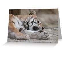 tiger in the jungla Greeting Card