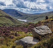 View from Ben Crom by Nigel R Bell