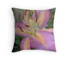 What a wonderful place to make love Throw Pillow