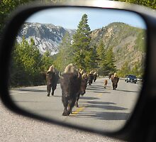 Objects in Mirror... by Christopher Barker
