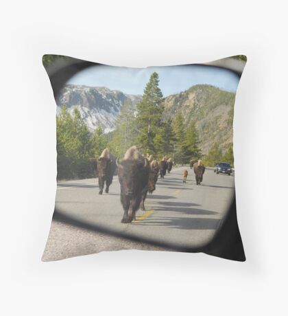 Objects in Mirror... Throw Pillow