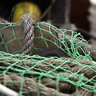 Fishing Net by bobbic