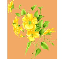Bouquet of yellow wildflowers Photographic Print