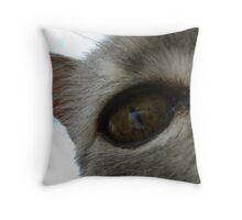 in a cat's eye Throw Pillow