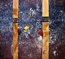 Juxtaposition by TaniaLosada