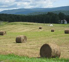 Hay bails by chinet