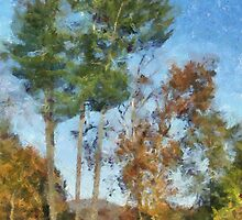 Tall Trees Against A Blue Sky by Jean Gregory  Evans