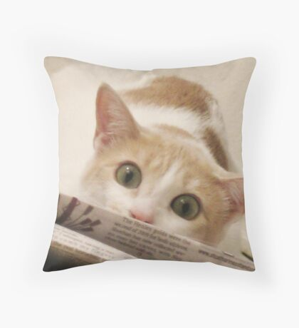 Pouncing Lessons Throw Pillow
