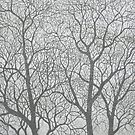 Tree Composition 1 by Christopher Clark