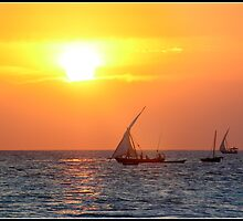 Zanzibar sunset by Shaun Whiteman
