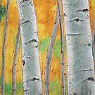 Aspen Grove by Christopher Clark