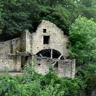 Jesmond Dene Old Mill by Jackie Wilson