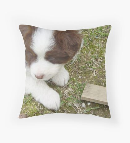 Red Tri-Color Throw Pillow