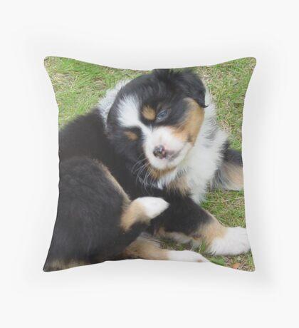 Black Tri-Color Throw Pillow
