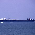 100801-6   BUSINESS AND PLEASURE ON LAKE ERIE by MICKSPIXPHOTOS