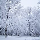 Snowy Day by tbailey1