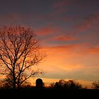 Colorful Sky by tbailey1