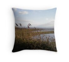 The Sea Wall, South Wales Throw Pillow