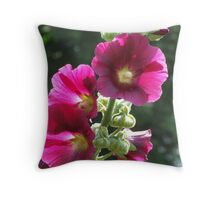 Sunkissed Hollyhocks Throw Pillow