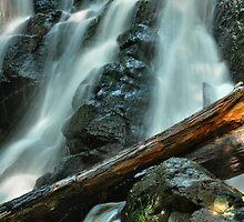 Raging Falls Detail by Stephen Vecchiotti