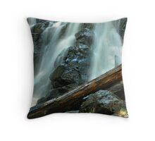 Raging Falls Detail Throw Pillow