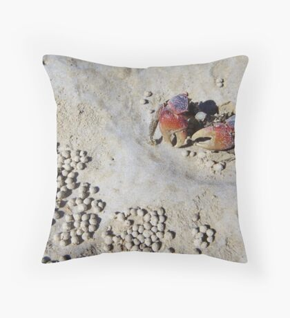 Coconut Wells Throw Pillow