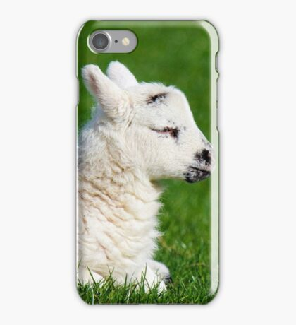 A Sleepy Newborn Lamb In A Field iPhone Case/Skin