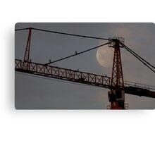 Moon&Crane Canvas Print