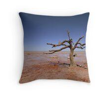 Crab Creek Throw Pillow