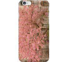 Brookline in bloom. iPhone Case/Skin