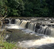 Aysgarth Upper Falls by KevM
