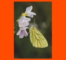 Green Veined White Butterfly on Cuckoo Flower Kids Clothes