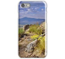 Palomino Valley Pre Sunset iPhone Case/Skin
